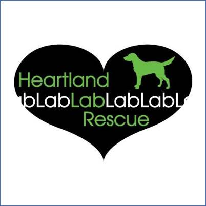 Heartland Lab Rescue