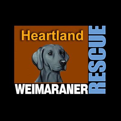 Heartland Weimaraner